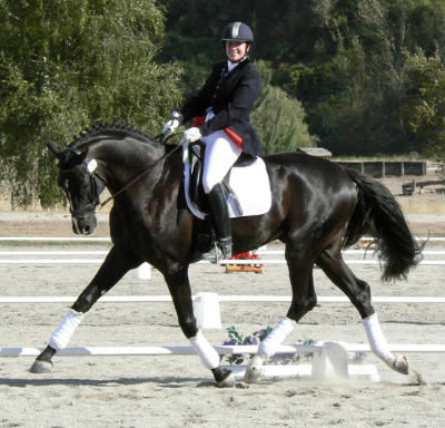 Ricky's big smile: test rider Ricky MacMillan scored Lessing's rideability 9.2. Lessing was crowned the National Champion of Champions Young Dressage Horse for 2008 at the NZ Dressage Championships.