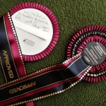 Gershwin and Lion King pass NZ Warmblood Stallion Classification